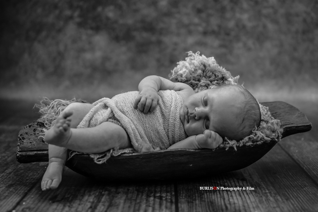 Newborn Portraits